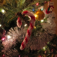 Eileen Casey - Candy Cane Christmas Ornament